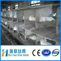2 layers rabbit breeding cages for sale/ practical wire pet cage