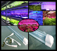 fast delivery 10pcs/lot 8W 60cm 48pcs SMD3528 T8 led grow light for farm/green house d309