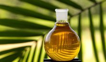 We Export Crude Palm Oil From MALAYSIA