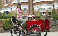 2015 hot sale three wheel electric jxcycle flatbed cargo trike