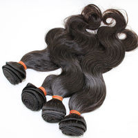 Homeage goddess remi fusion human hair extensions for black women