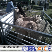 High quality sheep&goat cattle panels( factory ,ISO 9001 Certificate )