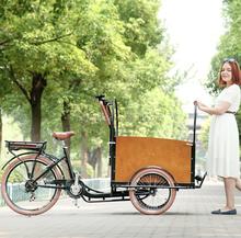 Aprovado pela CE pedal assistido estilo Holland caixa frontal motos 3 rodas para adultos