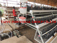 TAIYU low disease and death rate 5000 chickens cage