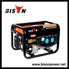 BISON(CHINA) homemade power generator