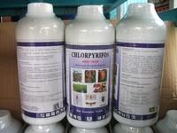 Liquid rodenticide Pesticide Chlorpyrifos 480g/L EC