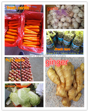 2014 Crop Fresh Carrot Import and Export (S, M, L, LL)/factory direct supplier