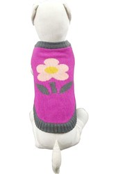 Knitted Cute Pet Clothing for Lovely Doggie