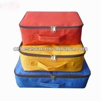 Travel organizer bag