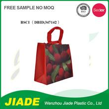 China Printing tote bag/Durable tote shopping bag handbag/OEM handbag