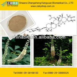 GMP Factory Supply Black Cohosh Extract Powder
