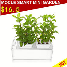 Smart garden indoor home hydroponics garden