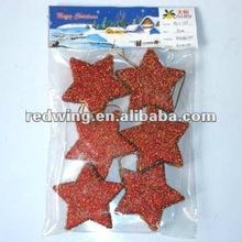 2012 Christmas Hanging Star