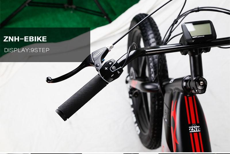 znh-e-bike-1616_03