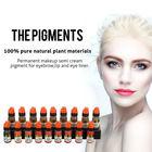 De alta qualidade Lushcolor permanente Makeup Pigment Ink Tattoo