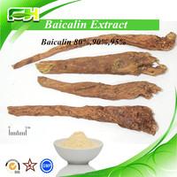 Chinese Medicine Skullcap Extract, Baicalin Extracts Power, Skullcap Extract