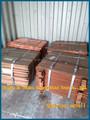 Exportadores e importadores de venda de cobre eletrolítico, a grade de cobre preço em gramas