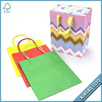 Beautiful Biodegradable Tote ECO Foldable Paper Shopping Bag
