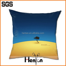 good quality throw pillows/ decorative pillow
