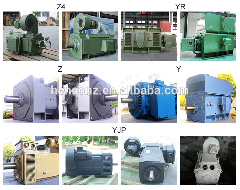 380v 690v Etc 22kw 1250kw Servo Motor Industrial Electric Servo Motors From Hangzhou Hensonz