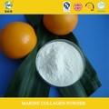 Aliments contenant haute teneur en protéines 90% collagène naturel sources