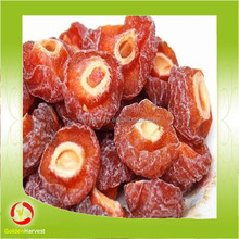 top quality sour green plum with ISO, HACCP, direct factory