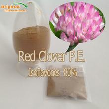 High quality Red Clover p.e.