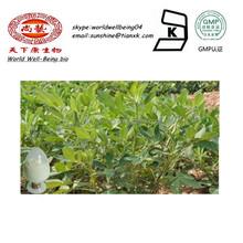 Red Peanut kernels Skin Extract/ Powdered Peanut Husk Extract OPC / Peanut Plant Extract Luteolin 98%HPLC