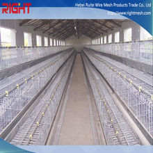 China supplier high quality new type chicken cage, plastic chicken coop