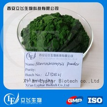 Manufacturer supply Nannochloropsis oceanica powder