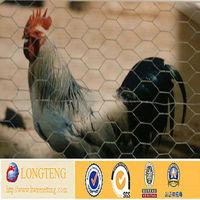 Galvanized Hexagonal Chicken Mesh/Chicken Preservative
