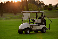 Electric Golf Cart 2 / 4 seater