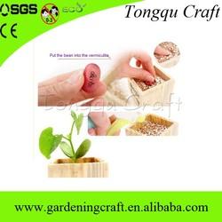 gadget seed growing kit one euro shop, magic growing wishing