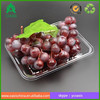Rectangular clear vacuum forming ClamShell Punnet PET Tray 20*15*2.5cm