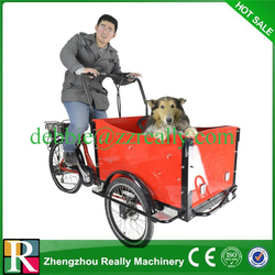 Electric tricycle for cargo with tricycle cargo box cargo bike for sale