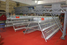 Chicken Egg Laying Equipment/Chicken Egg Laying Cages