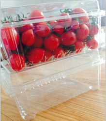 PET/PVC/PS/PP OEM food/fruit tray