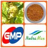 Hot sale Plant extract Chinese dodder seed extract/Dodder seed extract/Cuscuta seed extract