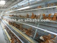 Durable no rust automatic poultry layer cage/chicken laying cage/egg laying cages