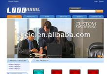 Professional Multi Languages Business Website Design and SEO Promotion Services
