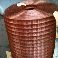 China Supplier Copperized Welded Wire Mesh (Factory)