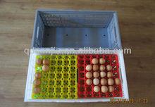 plasstic popular egg crate popular egg crate or folding egg box