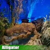 Outdoor High Simulation Zoo Decoration Life size Crocodile