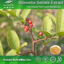Factory supply Boswellia serrata extract/Boswellic acid 65%/Frankincense extract/Anti-cancer plant extract