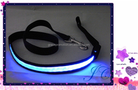 Most Popular Led Light pet leash Glowing safety dog Collar For Wholesale