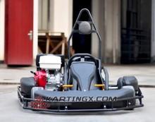 Racing Go Kart, Karting Cars, 250cc Karting for Sale