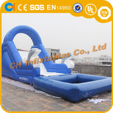 Hot Sell Inflatable Dolphin Water Slide with pool, inflatable slide pool, kids inflatable sliding pool