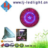 9W Plant Grow Light Bulb 168 pcs of 0.06V Par38 LED Grow Light with E27 Socket for Indoor Garden Hydroponic Growings