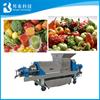 Spiral juice extractor/industrial fruit juice extractor