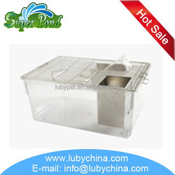 CP-6 mouse group breeding rat breeding cage